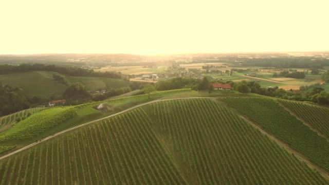 aerial farmhouse on top of a vineyard - prekmurje stock videos & royalty-free footage
