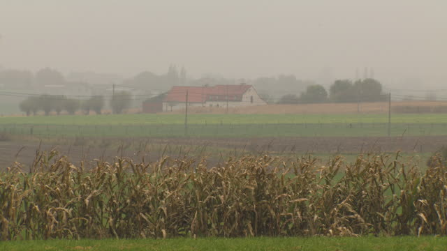 A farmhouse stands beyond fields divided by fences, Belgium.
