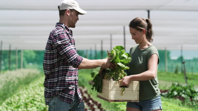 farming is second nature to us - coworker stock videos & royalty-free footage