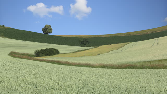 farmland and grassland / germany - ländliches motiv stock-videos und b-roll-filmmaterial