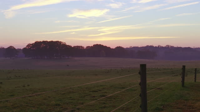 farmland / countryside with fence in foreground - fence stock videos & royalty-free footage