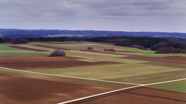 バーデン = ヴュルテンベルク州、ドイツの森林に縁取られた農地ドローン ショット - バーデン・ビュルテンベルク州点の映像素材/bロール