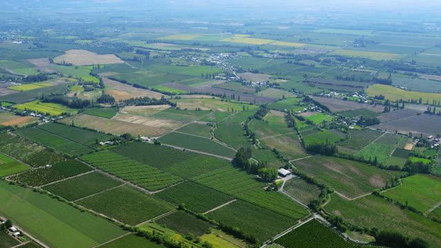 Farmland In Maule Region Of Chile
