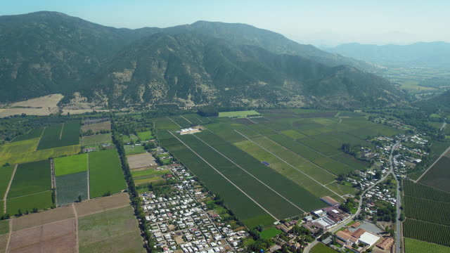 farmland nestled below mountains - weinberg stock-videos und b-roll-filmmaterial