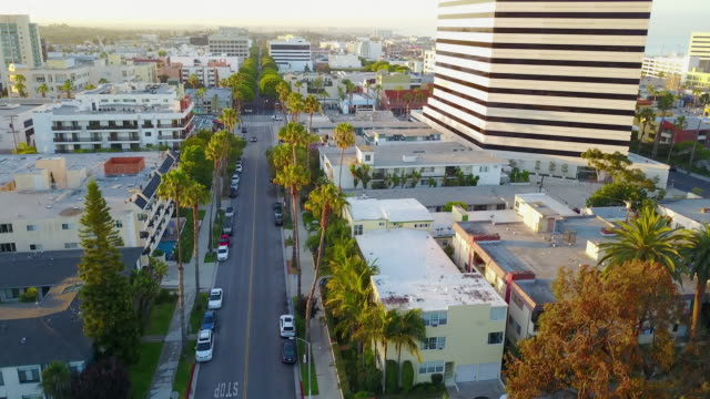 fast ascension through palm trees, la - santa monica sign stock videos & royalty-free footage