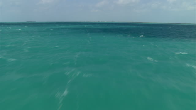 fast flight over green water toward florida coastline near miami - artbeats 個影片檔及 b 捲影像