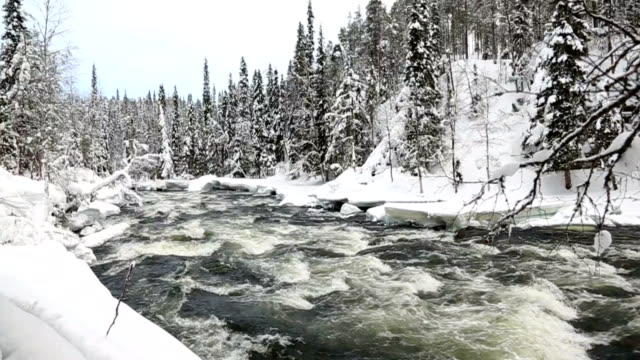 Fast flowing river winter snow Juuma Oulanka Nat Pk Finland slow motion