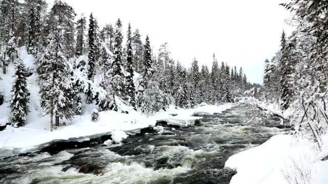 fast flowing river winter snow juuma oulanka nat pk kuusamo, finland - peter snow stock videos & royalty-free footage