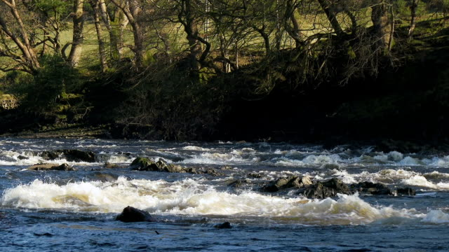 Fast flowing water on a Scottish river
