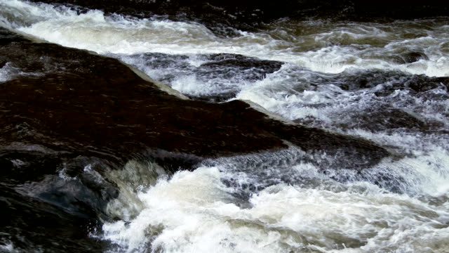 stockvideo's en b-roll-footage met fast flowing water on the falls of clyde, scotland - johnfscott