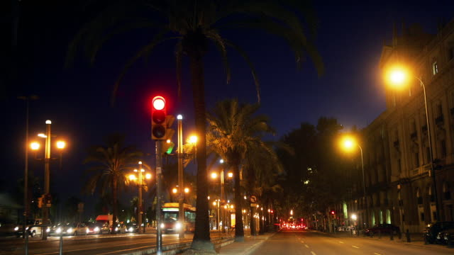 Fast motion wide shot point of view driving down Passeig de Colom at night/ Barcelona