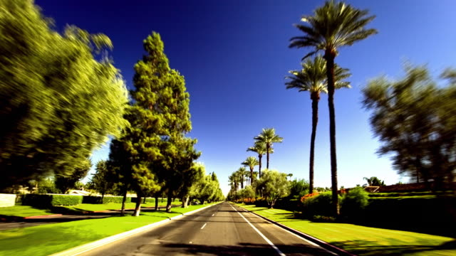 WS T/L POV Fast moving car driving on street lined by palm trees and green grass and lush vegetation / Palm Springs, California, USA