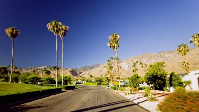 WS T/L POV Fast moving car on street lined by palm trees on both sides / Palm Springs, California, USA
