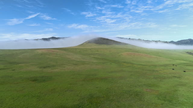 fast moving low cloud coming from the pacific ocean around the hills in san simeon, california, nearby cabrillo highway, and arroyo del oso. the windy sunny spring day. aerial drone video with the forward camera motion. - national grassland stock videos & royalty-free footage