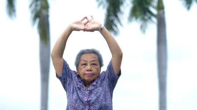 stockvideo's en b-roll-footage met dikke senior vrouw ontspanning oefening in het park - 65 69 jaar
