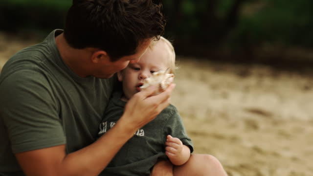 father and baby at the beach - seashell stock videos & royalty-free footage