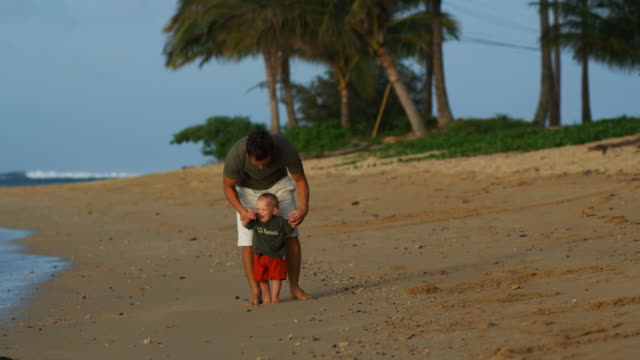 father and baby at the beach - fan palm tree stock videos & royalty-free footage