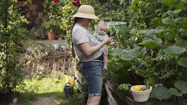 father and baby girl doing harvesting in their organic garden. - genderblend stock videos & royalty-free footage