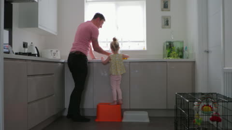 father and daughter cleaning up - cabinet stock videos & royalty-free footage