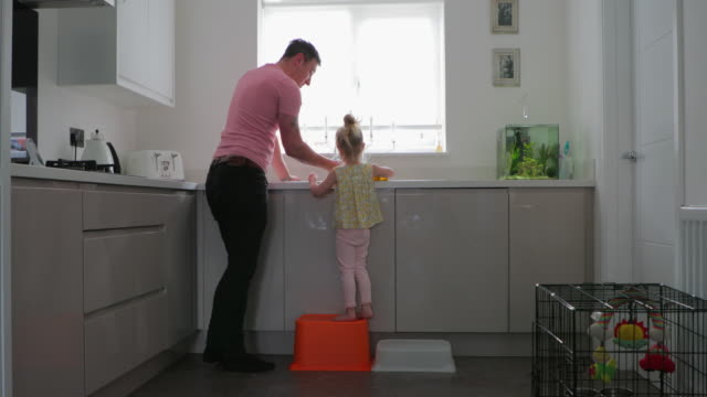 father and daughter cleaning up - cupboard stock videos & royalty-free footage
