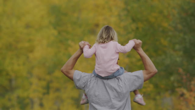 father and daughter walking through the woods - american fork canyon stock videos and b-roll footage