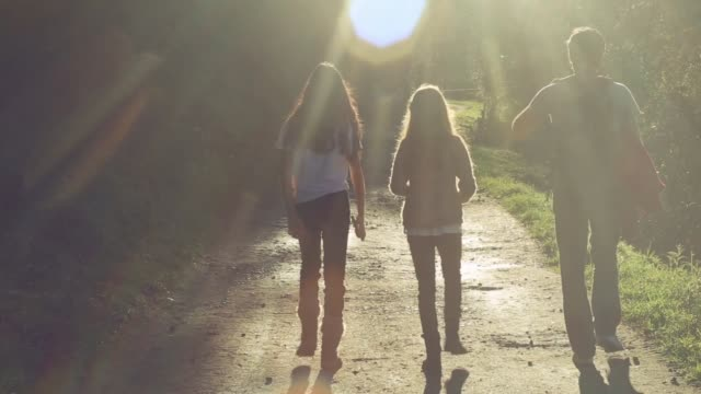father and daughters walking together in nature in an idyllic sunny day - light beam stock videos & royalty-free footage