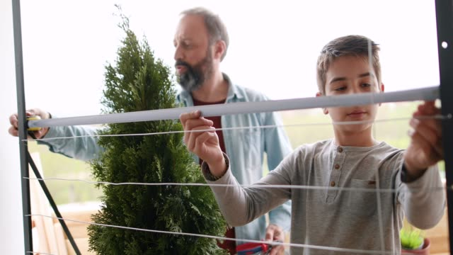 father and his son making garden on the balcony - instrument of measurement stock videos & royalty-free footage