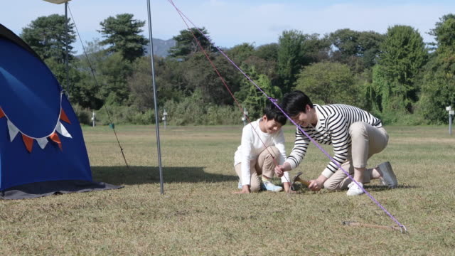 father and son building a tent on the camping grounds - ピクニック点の映像素材/bロール