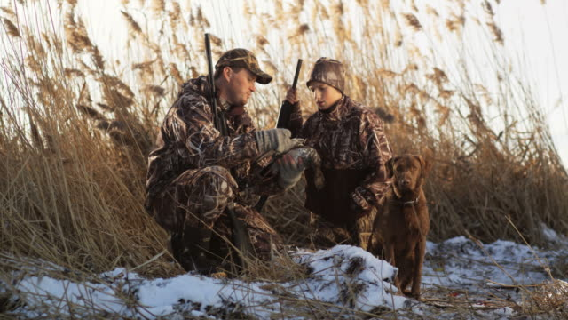 father and son duck hunting - hunting sport stock videos & royalty-free footage