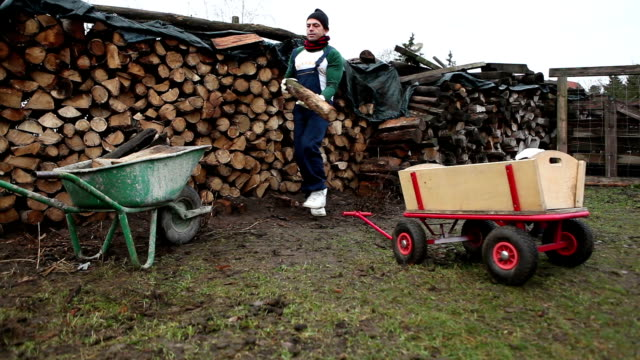 father and son hardworking at the countryside - firewood stock videos & royalty-free footage