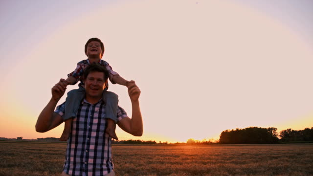slo mo father and son having fun in wheat field - carrying on shoulders stock videos & royalty-free footage