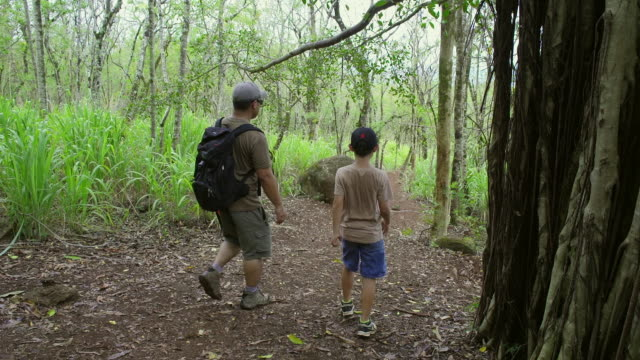 stockvideo's en b-roll-footage met father and son hike down a forest trail - baseballpet
