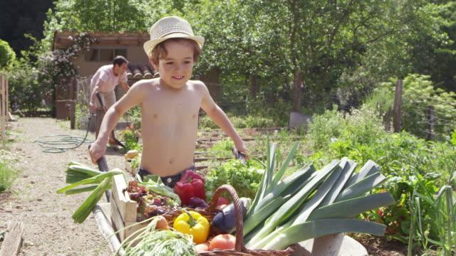 vídeos y material grabado en eventos de stock de padre e hijo en el patio trasero durante el verano - sin camisa
