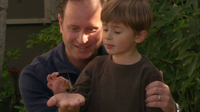 cu, father and son (4-5) looking at grasshopper in garden, los angeles, california, usa - 腕をまわす点の映像素材/bロール