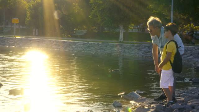 stockvideo's en b-roll-footage met vader en zoon kijken naar de eenden op de vijver bij zonsondergang - vijver