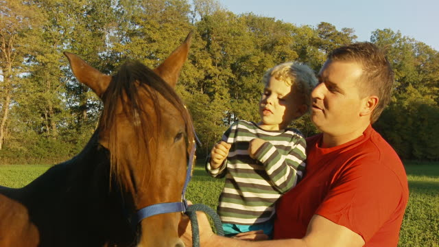 HD: Father And Son Patting A Horse