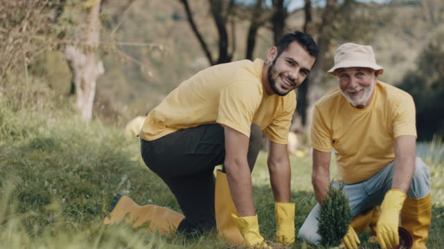 father and son planting a tree - sustainable tourism stock videos & royalty-free footage