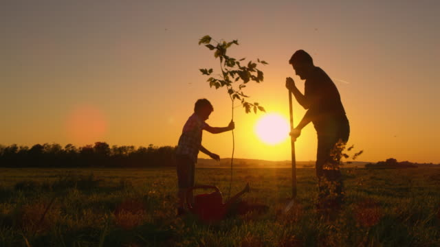 DS Father and son planting a tree