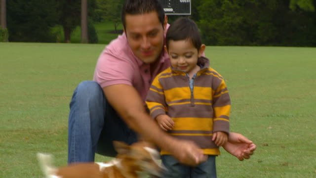 CU, TD, TU, Father and son (18-23 months) playing with dog in garden, Richmond, Virginia, USA