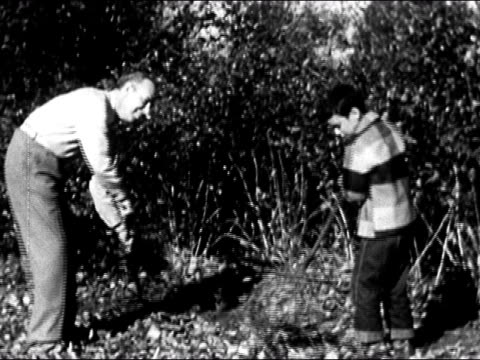 1950 Father and son raking leaves in backyard / USA / AUDIO