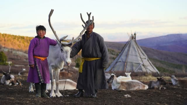 father and son  shepherds standing near the reindeer near teepee - independent mongolia stock videos & royalty-free footage
