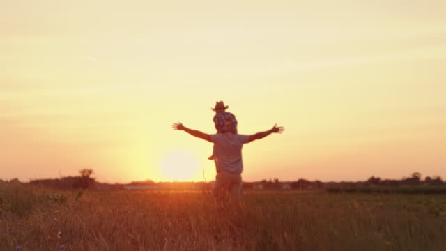 slo mo father and son spending quality time together in a field at sunset - sognare ad occhi aperti video stock e b–roll
