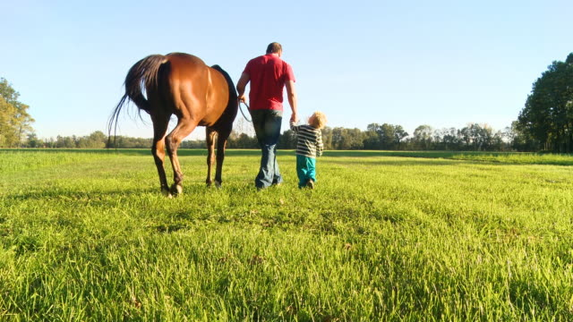 hd crane: father and son walking a horse - ranch family stock videos & royalty-free footage
