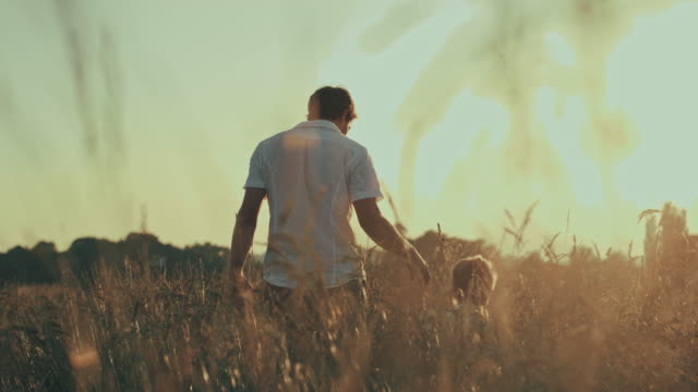 stockvideo's en b-roll-footage met slo mo father and son walking in a meadow - op de rug gezien