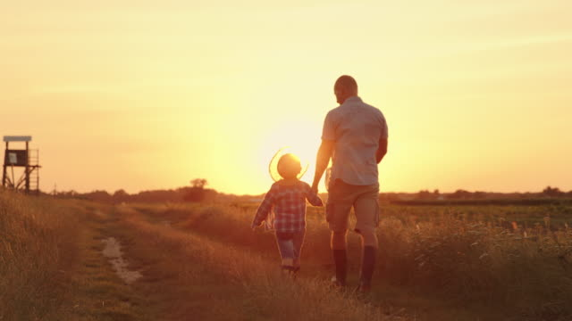 slo mo father and son walking together in a field at sunset - offspring stock videos & royalty-free footage
