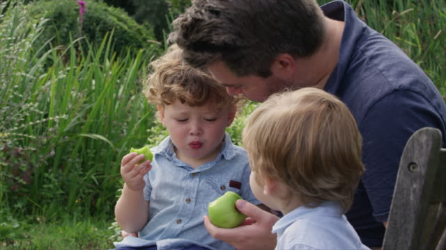father and sons eating apples - genderblend stock videos & royalty-free footage