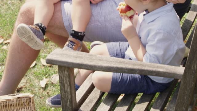 vídeos de stock e filmes b-roll de father and sons eating apples - genderblend