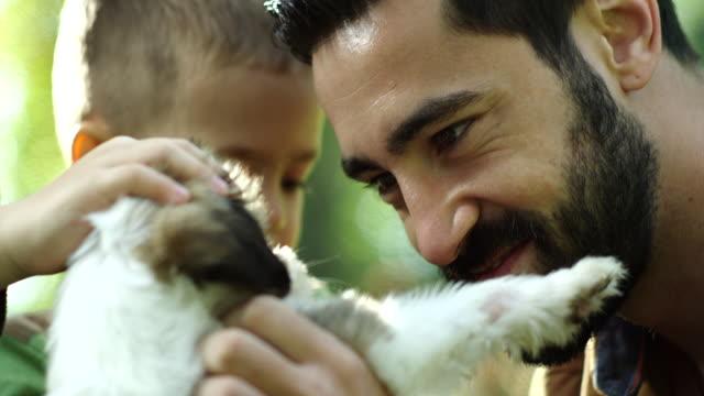 父と息子が公園で犬と遊ぶ - イヌ科点の映像素材/bロール