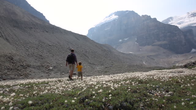 father and young son hike through mountain meadow - beginnings stock videos & royalty-free footage