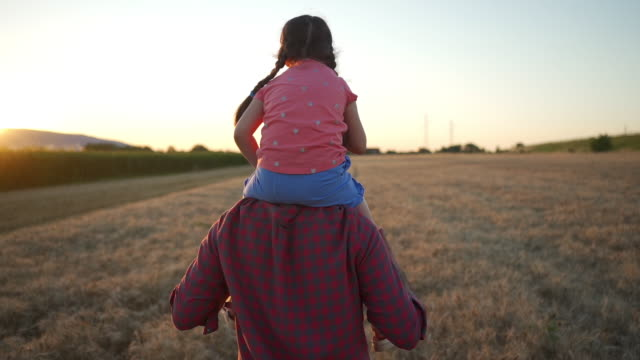 father carries his daughter on his shoulders through a field of wheat at sunset a wheat field at sunset - field stock videos & royalty-free footage